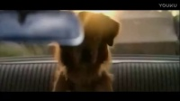 一条狗的使命【高清】