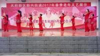 紫涵广场舞《撸起袖子加油干》VID_20170322_095225
