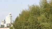 兰溪中洲公园