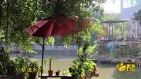 芒果看天下 第37集:探访广州最后一处小桥流水,三生三世缔造十里岭南