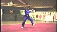 1995年全国武术套路锦标赛 女子传统项目 单器械 007 朴刀 冯静坤(山东)
