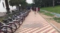 環島路騎車