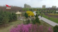 东湖春暖花开