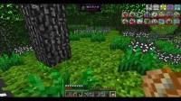 minecraft虚无世界2EP11:前往蠕变之地探险