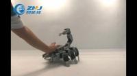 智能佳-百乐系列加强版-蝎子演示视频