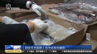 集装箱冻鱼藏毒品  上海海关缴获1.1吨可卡因 上海早晨 170623