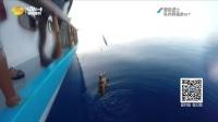 海洋战士20170622期:马代浅礁战GT