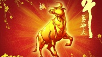 老股民用10年的炒股技术捕捉大涨牛股