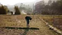 农村恶搞视频