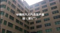华博向大大内衣生产基地