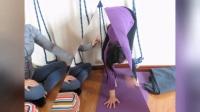 视频汇总(瑜伽第二集)1美女学瑜伽、2参加才艺大赛、3每天早上从瑜伽开始/广丰区顾,,