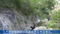 大别山骑龙寺国学夏令营筹备会
