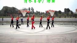 2014 广场舞 我们的钓鱼岛 广场舞教学