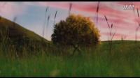 《諾亞方舟:創世之旅 》電影片段 諾亞的三個創世紀故事