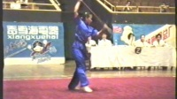 1995年全国武术套路锦标赛 女子传统项目 单器械 008 朴刀 宋玲(安徽)