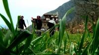 最美乡村 丹巴 梭坡 古碉藏寨 迷人的风景 我为我故乡代言 藏歌南措 制作龙塔泽仁