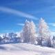 北国飘雪-