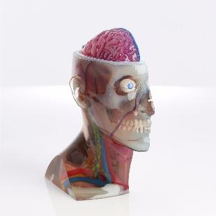 3D打印及3D扫描