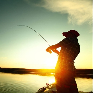 世界钓鱼视频大全
