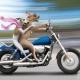 骑着大摩托