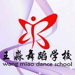 王淼舞蹈学校学生演出