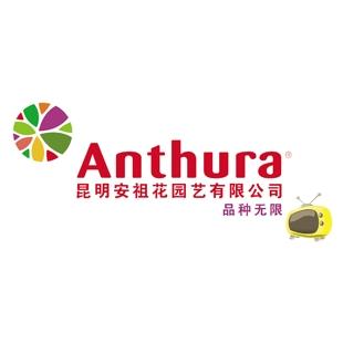 AnthuraTV