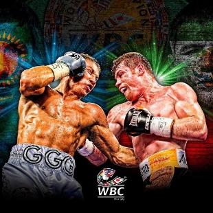 Boxing-职业拳迷
