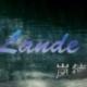 岚德Lande