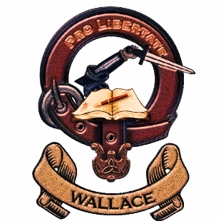 Wallace华乐丝英文润色