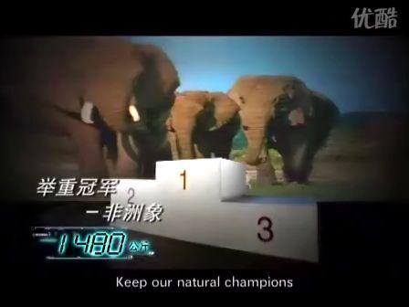 "Biodiversity Protection 30""Lou Yun"