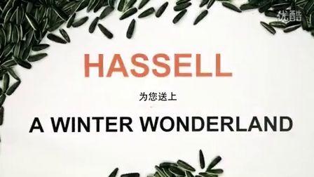 HASSELL_2012年冬季佳节献礼Winter Wonderland全球14个事务所的祝福