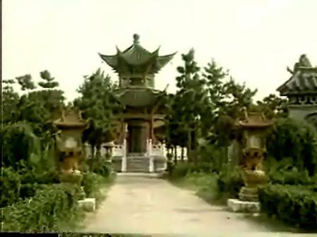 中国针炙学(30讲)